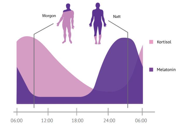 Vår biologiska klocka