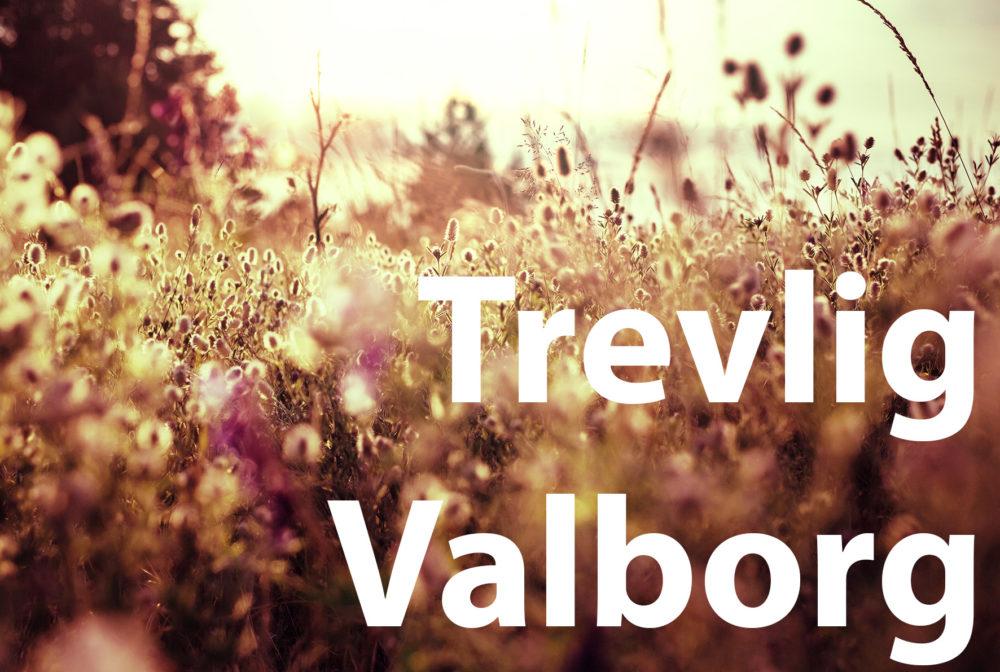 Vi önskar trevlig Valborg!